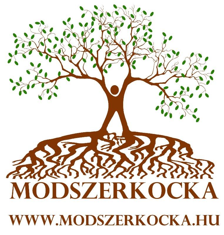 logo2_modszerkocka